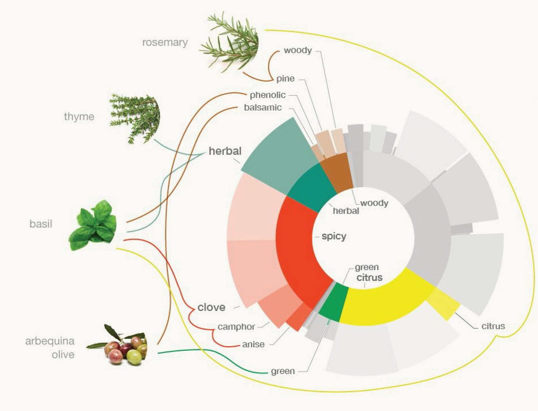 Botanici Aromatico