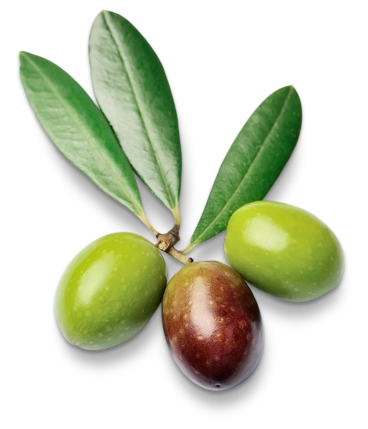 Botanicals Ginmare