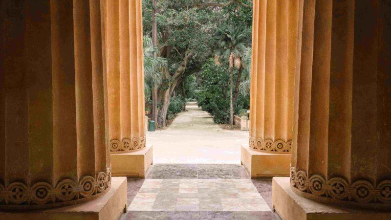 Orto Botanico di Palermo: viaggiare...