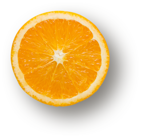 Botanical Orange